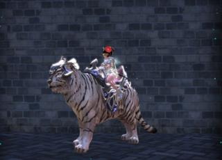 Les skins des montures Tigre_10