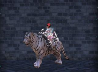 Les skins des montures Tigre_11