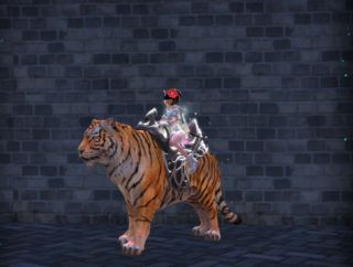 Les skins des montures Tigre_13