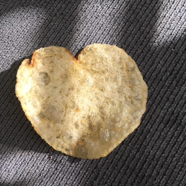 Happy Valentine's Day como  Img_4112