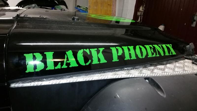 Black Phoenix repair - Pagina 3 Img-2018