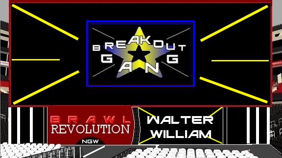 BRAWL Révolution 47 Breako11