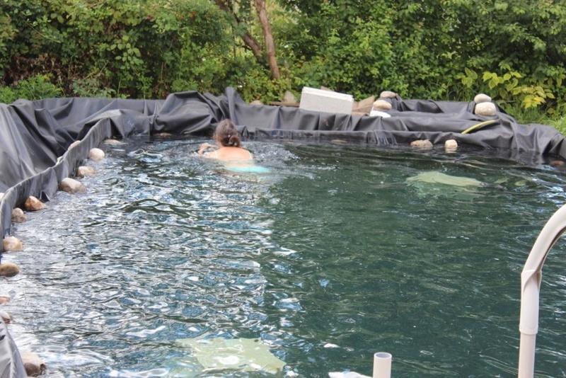 création piscine Img_3610