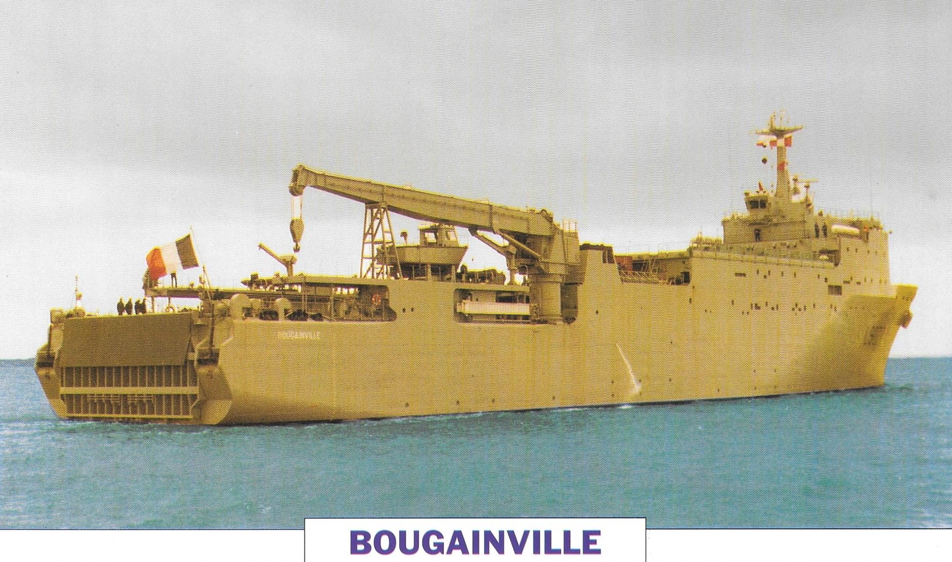 Bougainville - Présentation Bou10