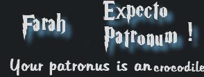 Test- Découvrez votre patronus d'Harry Potter 67142213