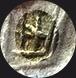 Denier Caecilia – Marcus Cæcilius Metellus Golem_10
