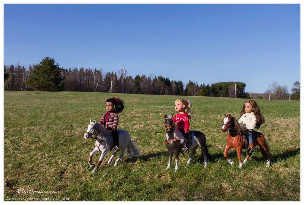 Mes poupées au Canada/USA : 25/06 - p.36   (nettoyage de voiture, balade et question, robe amérindienne, esquimau glacé) - Page 34 Img_3515