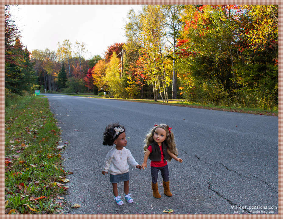 Mes poupées au Canada/USA : 25/06 - p.36   (nettoyage de voiture, balade et question, robe amérindienne, esquimau glacé) - Page 5 Img_7315