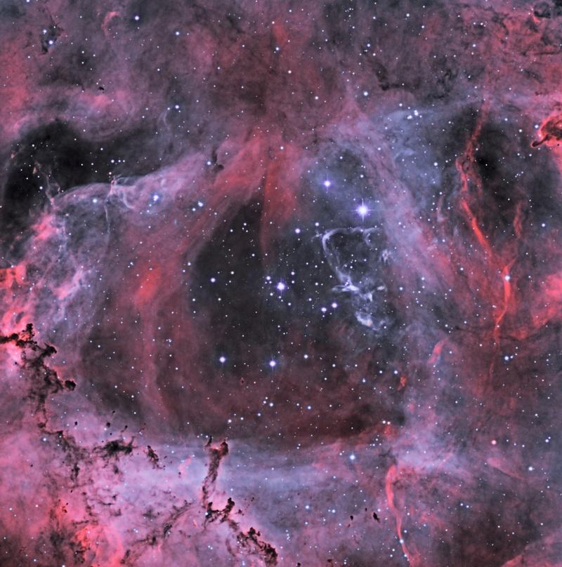 Le coeur de la Rosette en HOO Ngc_2213