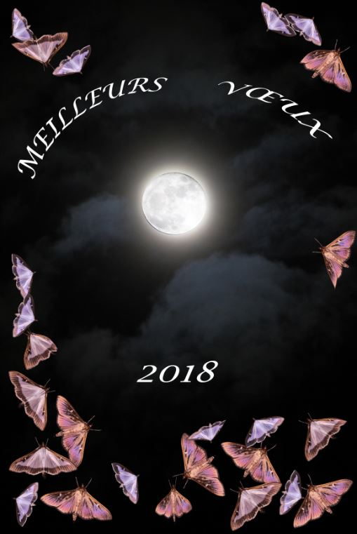 Meilleurs voeux 2018 Voeux_10
