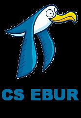 Championnat de Polo Lédonien 2018-2019 Csebur12