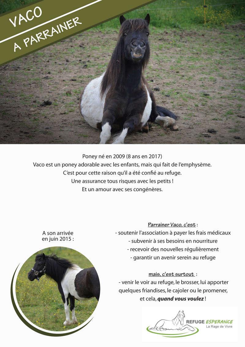 Vaco, emphysémateux Vaco_p10