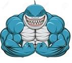 CS2018 - 1° prova - Passeggiata degli squali - 29 Marzo 2018 Squalo10