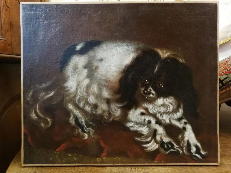 Les chiens de Marie Antoinette - Page 4 32144110