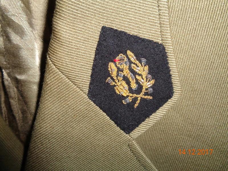 vareuse médecin Infanterie de marine Dsc00911