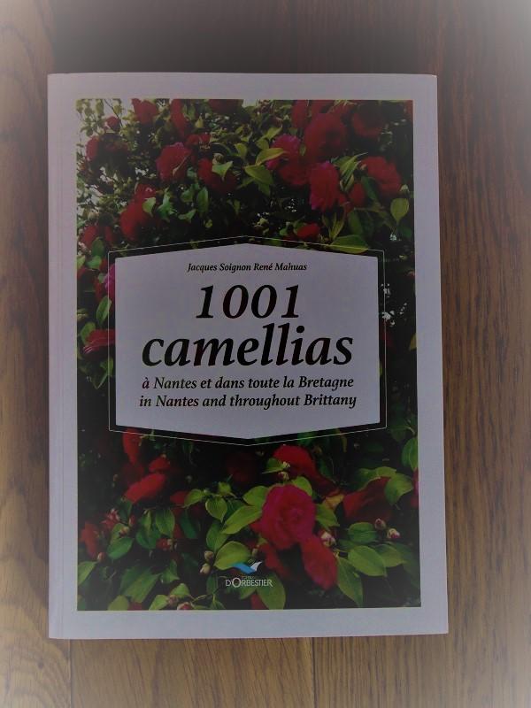 Camellia 2018 - Page 2 1001_c10