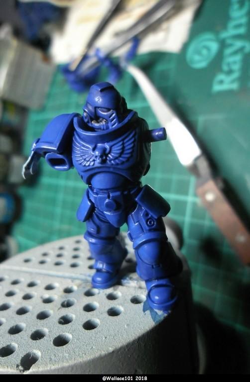 Primaris Ultramarines 3Cie GW 40mm (Lieutenant) Sam_1516