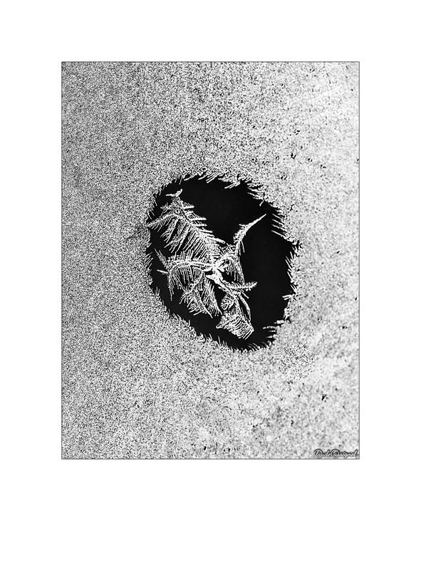 Atelier photo de Claude Cassignol (3) - Page 2 Mimg_714