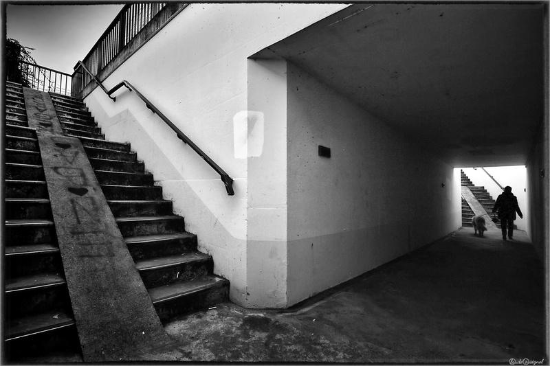 Atelier photo de Claude Cassignol (3) - Page 3 Mimg_718