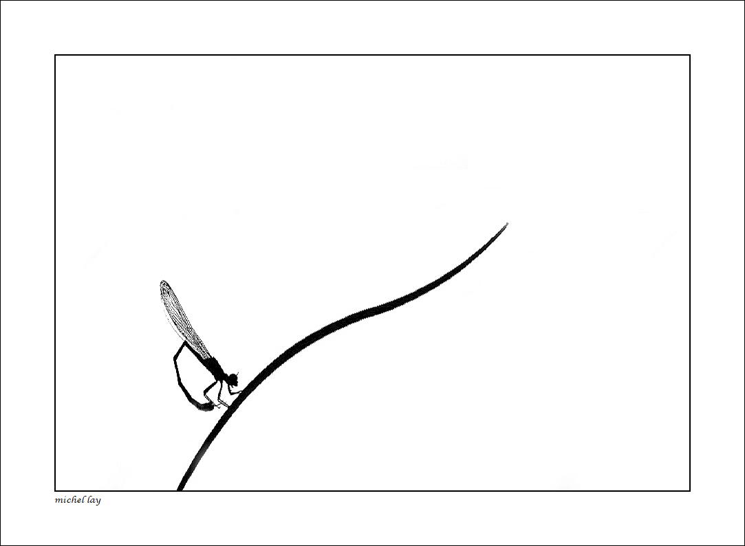 l'atelier de Michel Lay - Page 31 Lib910