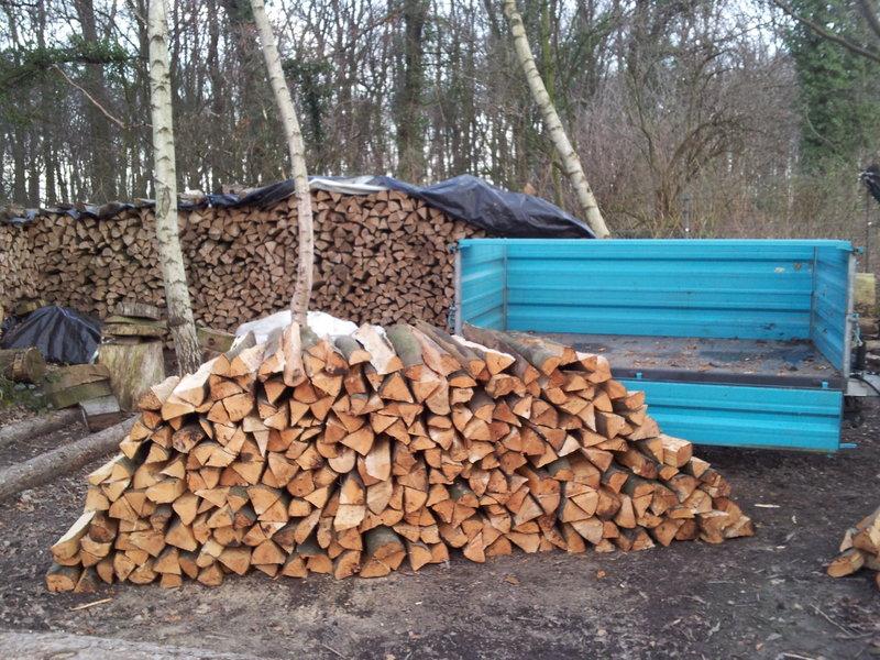 Izrada ogrijevnog drva - Page 23 17100310