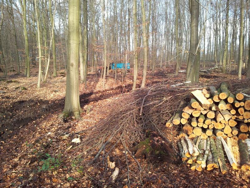 Izrada ogrijevnog drva - Page 23 17128811