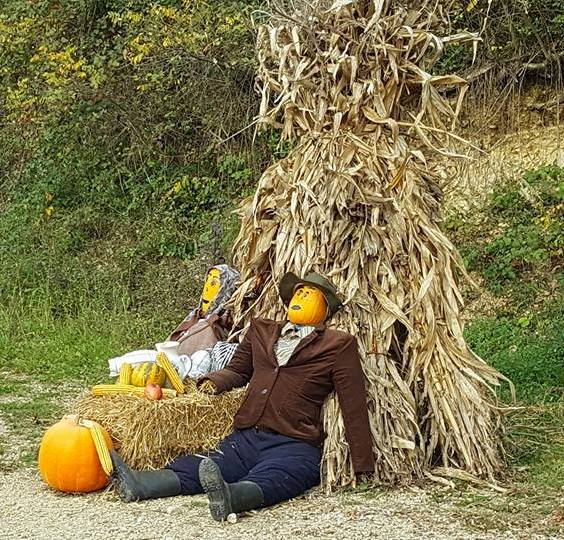 Agro fotografija Jesen_10