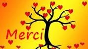 Newsletter du  12 décembre 2017 du Jardin du Rêve Merci187