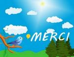 Newsletter du 18 septembre 2018 du Jardin du Rêve Merci348