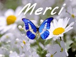Newsletter du 10 avril 2018 de Messages Reçus Merci371