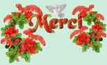Newsletter du 15 janvier 2019 du Jardin du Rêve Merci376