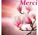 Créations en 2015 Merci569