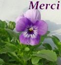 Juin 2018 Merci570