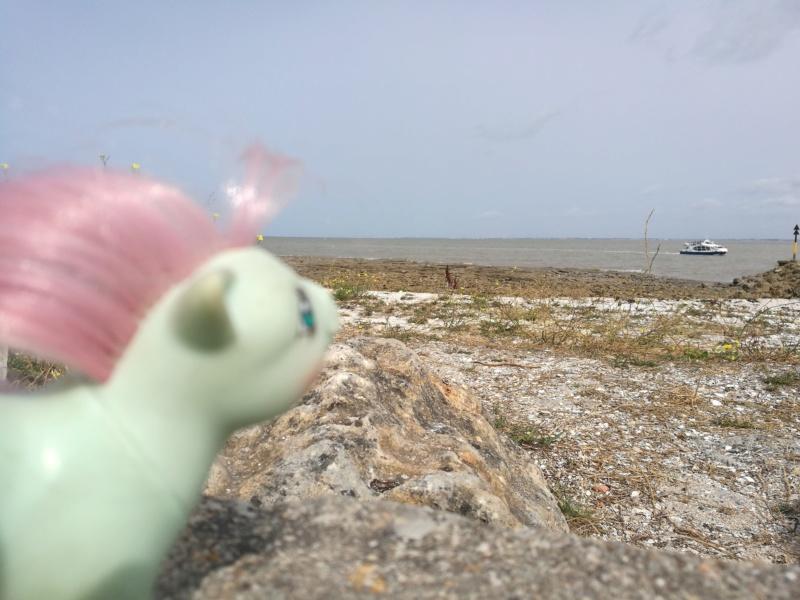 Séjour à La Rochelle avec les jouets! Img_2091