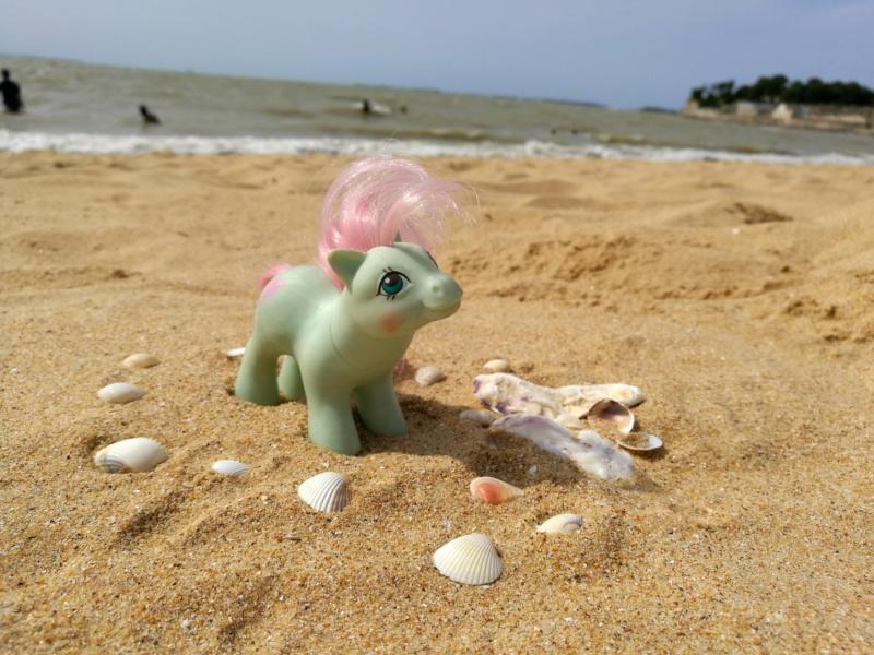 Séjour à La Rochelle avec les jouets! Img_2092