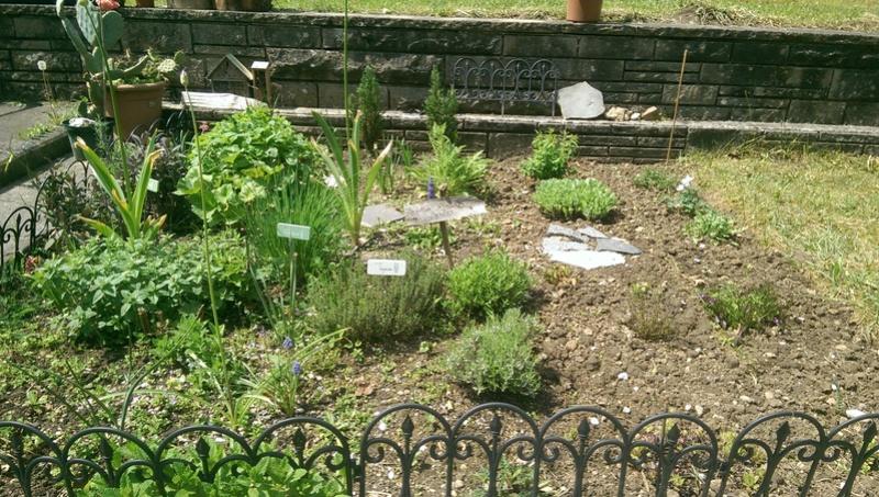 Gärten im Bilde - Seite 9 Imag1224