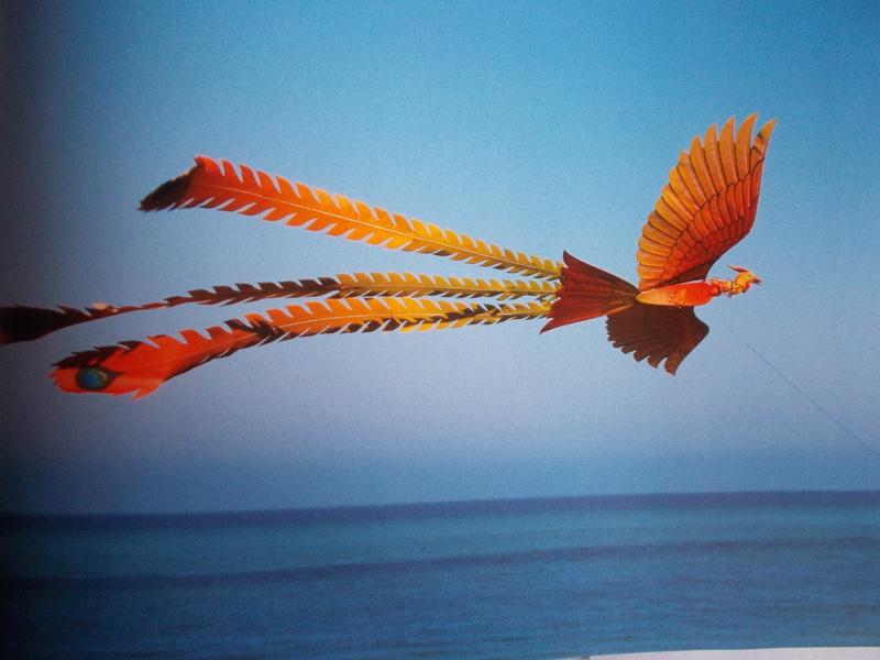 Les cerfs-volants Dscn0120