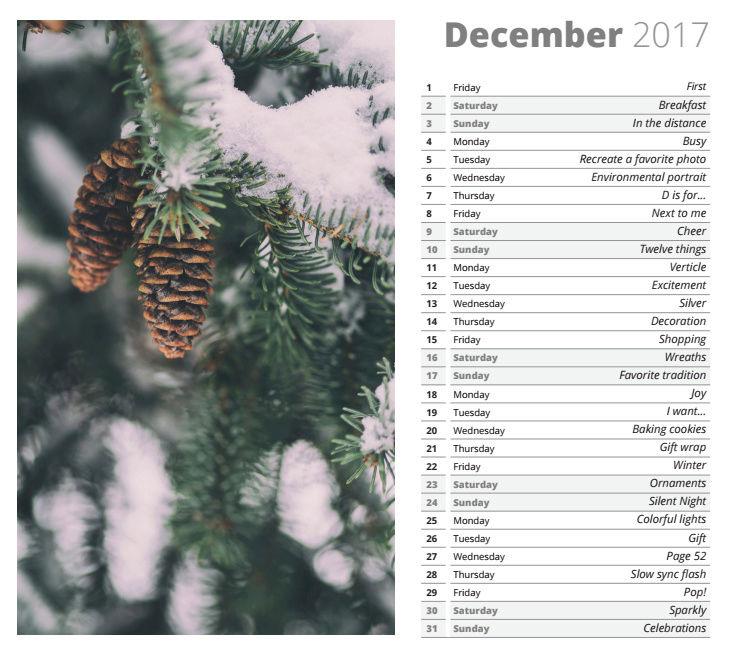 photo challenge décembre Dycemb10