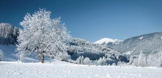 ♡ Swap hiver ♡ réceptions ♡ Fotoli10