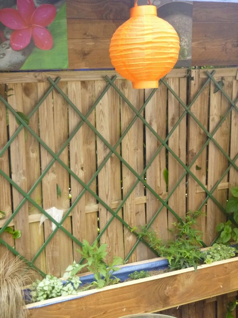 bassin de jardin 8000L - Page 40 P1000033