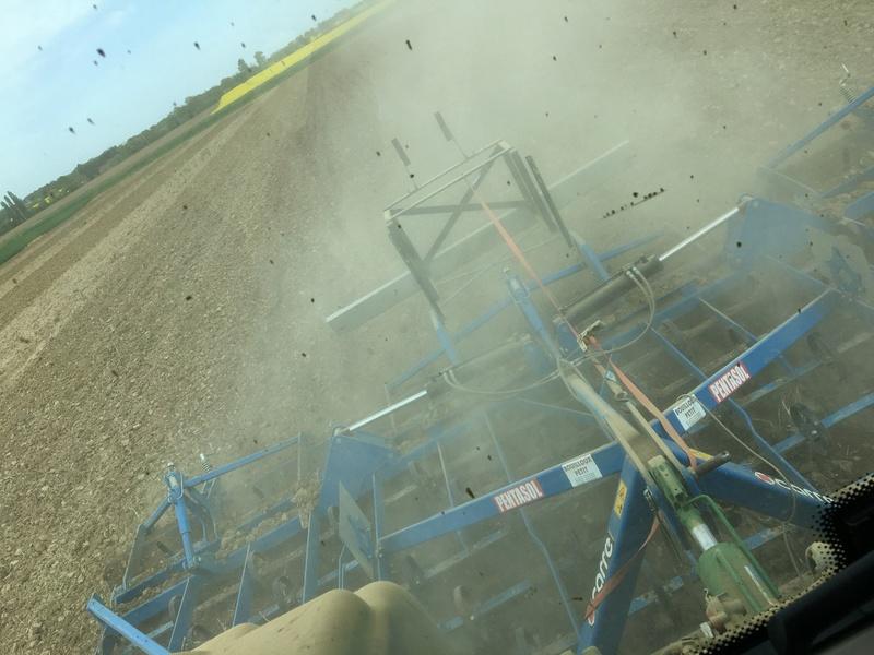 Préparation de sol après couvert. Img_1314
