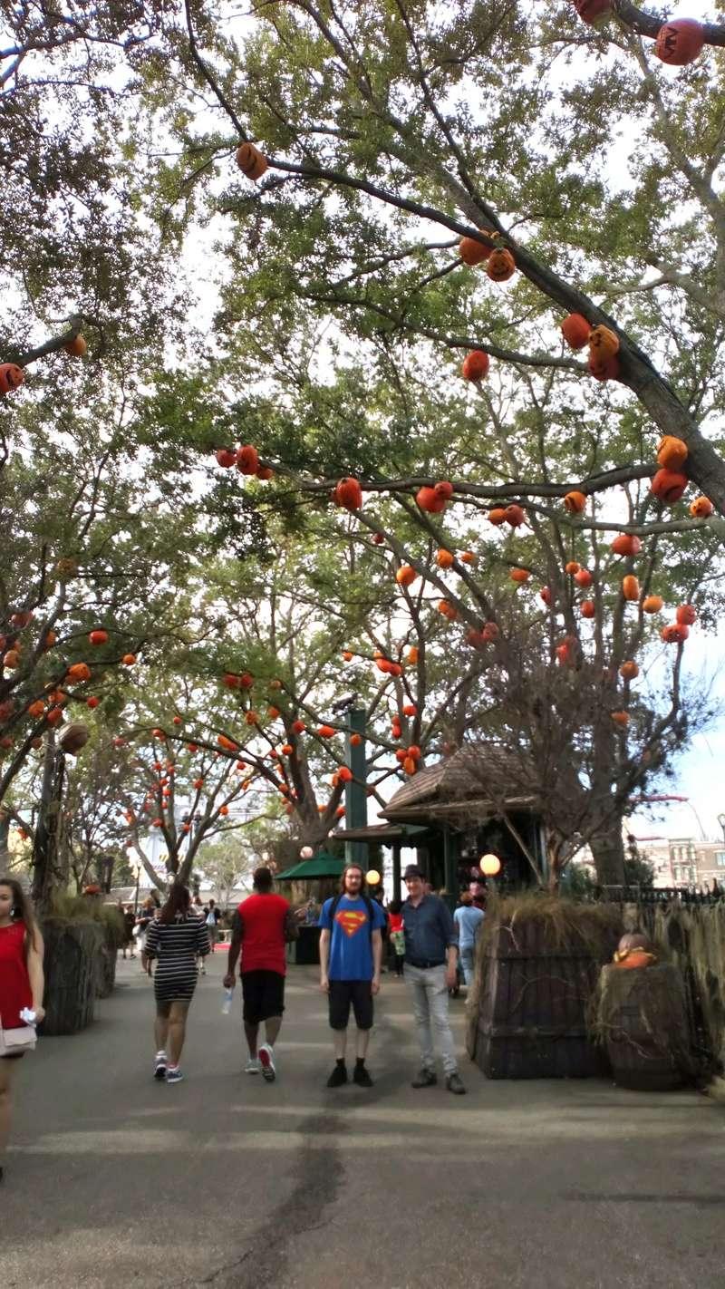 [Halloween 2018] Universal Studios, Disney Cruise Line dans les caraïbes et Gatorland Dsc_0551