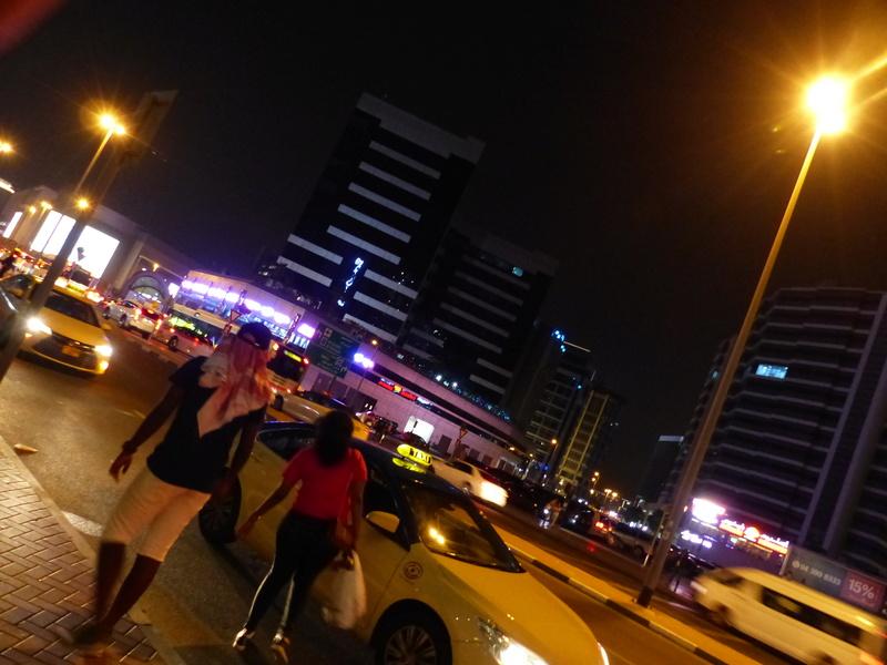 [TR Avril-mai 2018] Un voyage fou à Dubaï : des parcs, de la nourriture, du désert et un hôtel de luxe ! P1040939