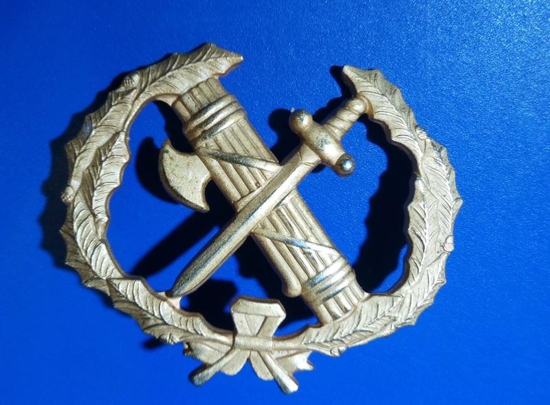 Old Italian Insignia Img_2011