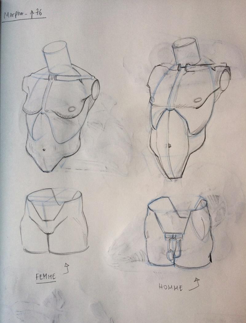 Etudes et croquis de Sofi - Page 20 Fulls136