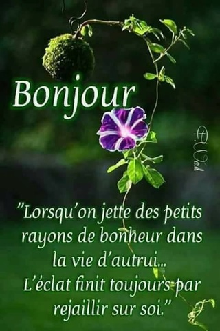 Bonjour du jour :)  - Page 31 31081510