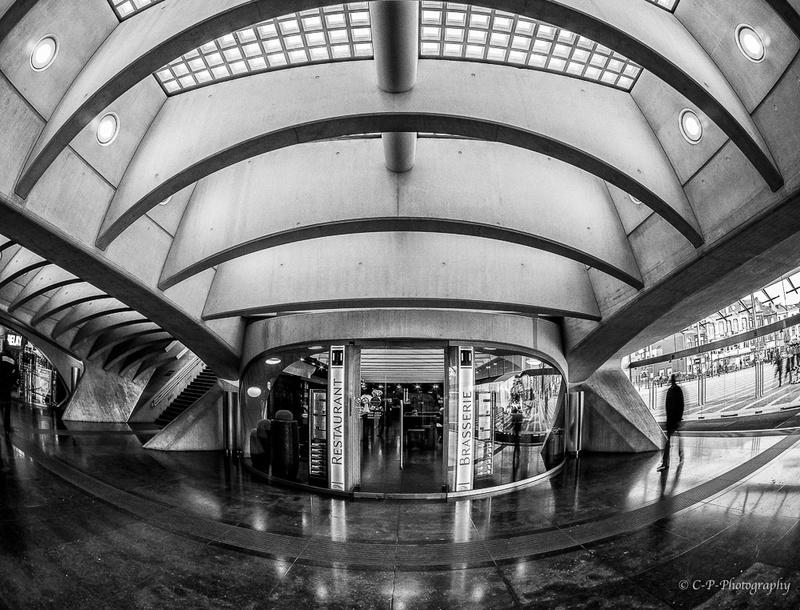 Série N/B sur la gare _2030028