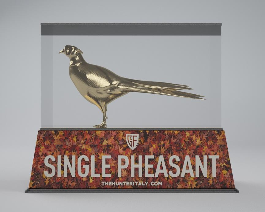 [CONCLUSA] Competizioni ufficiali TheHunteritaly - Single Pheasant/manuelito00 contest  - Fagiano - A11