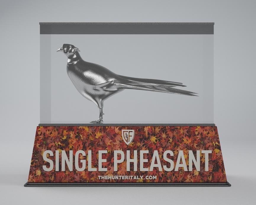 [CONCLUSA] Competizioni ufficiali TheHunteritaly - Single Pheasant/manuelito00 contest  - Fagiano - B11