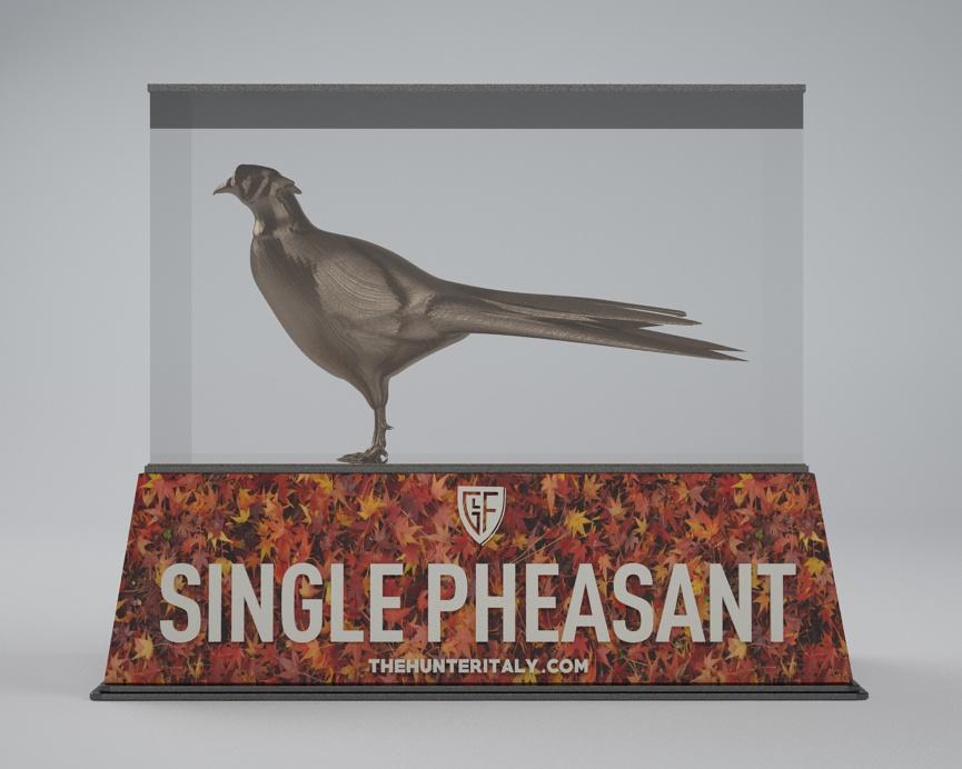 [CONCLUSA] Competizioni ufficiali TheHunteritaly - Single Pheasant/manuelito00 contest  - Fagiano - C11